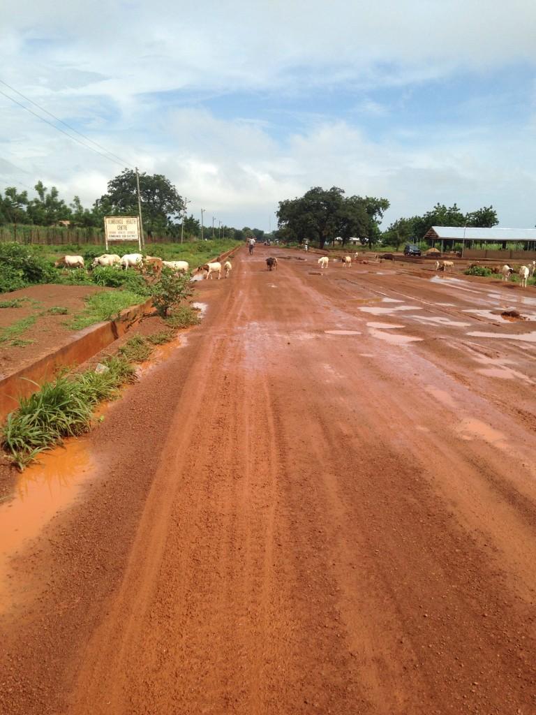 Ghanaian Farm - AgriCorps